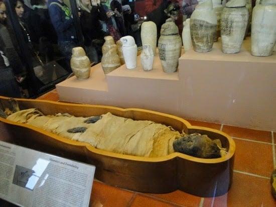 Sobre el recorrido por los Museos del Vaticano en Roma